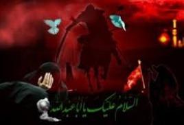 Абулфазл - немеркнущая звезда в караване Хусейна!